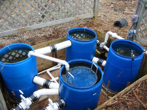 Garden endeavors for Gravity fed pond filter setup